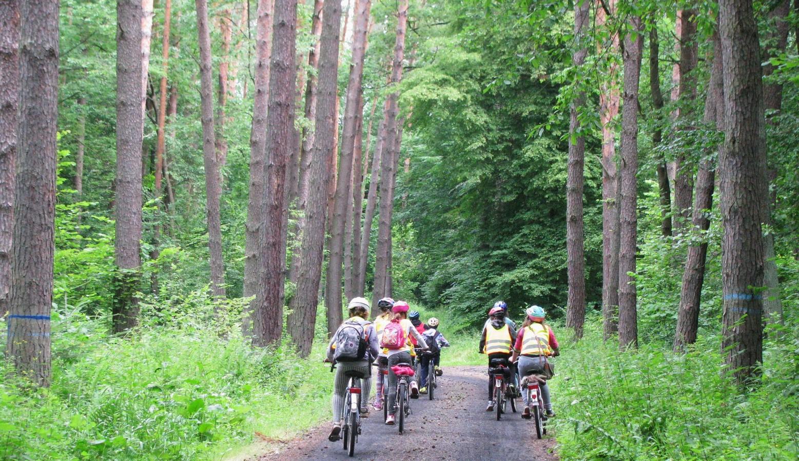 Rajd rowerowy 23.06.2015r (8)