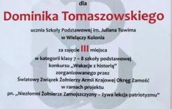"""Więcej o: Konkurs historyczny """" Wakacje z historią"""""""